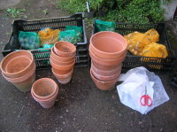 Bulb planting materials at the ready