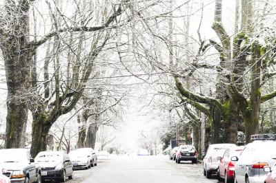 113 snow portland jones kqifdo