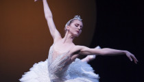 Thumbnail for - Pacific Northwest Ballet's Carla Körbes Announces Her Retirement