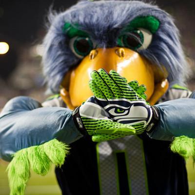 Seahawks mascot vebmam