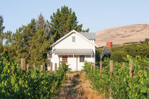 Thumbnail for - Best  Washington  Wines: 22 Top Tasting Rooms