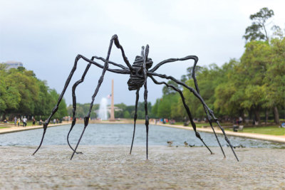 0614 museum district guide art spider elod74
