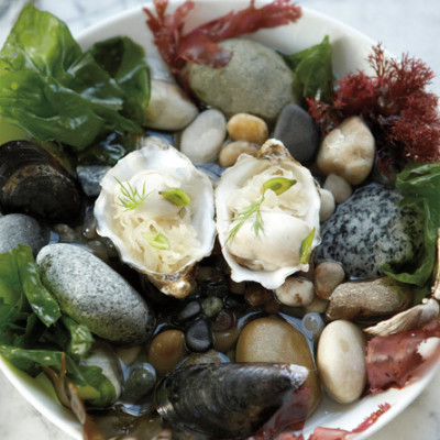 Willows inn oyster dish x2drpz