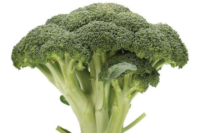 Kha 2013 broccoli hl6e3z