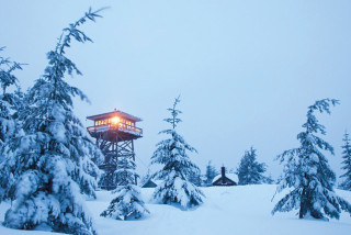 Thumbnail for - A Guide to Northwest Winter Wandering