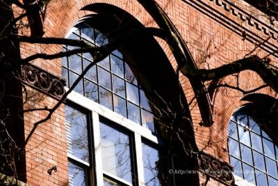 Pioneer square windows 31 zml6je