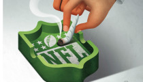 Thumbnail for - The Seahawks and the NFL Pot Problem
