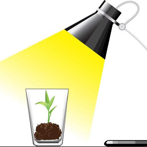 0213 heat lamp plant m7n91w
