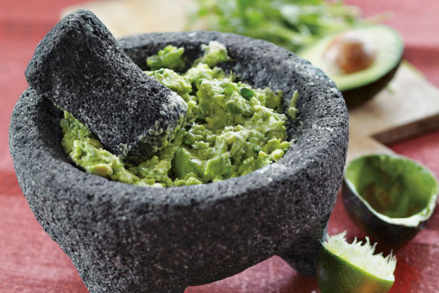 4.13 guacamole wmssonoma zo93ln