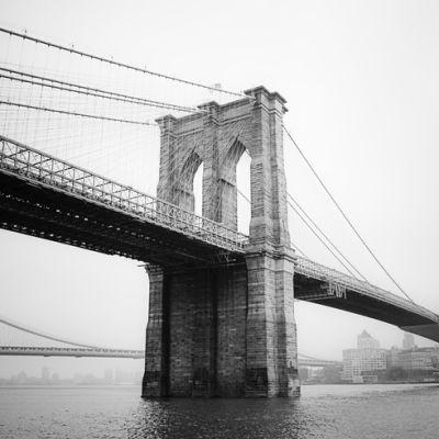 Brooklyn n3ttpt
