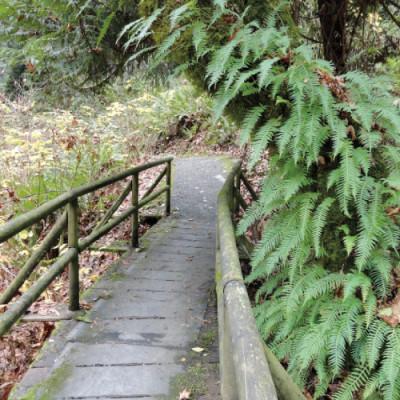 1212 mudroom trail ellis cove pms6vi
