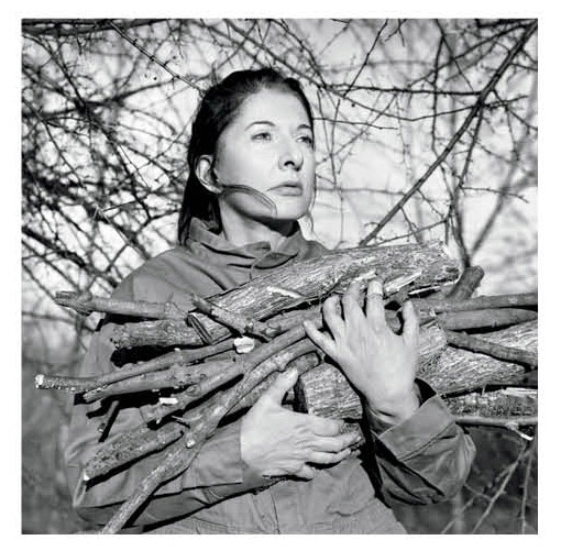 0513 catch this marina abramovic vaomn4