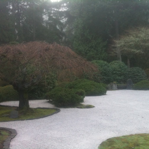 Japanese garden raked gravel atn4fc
