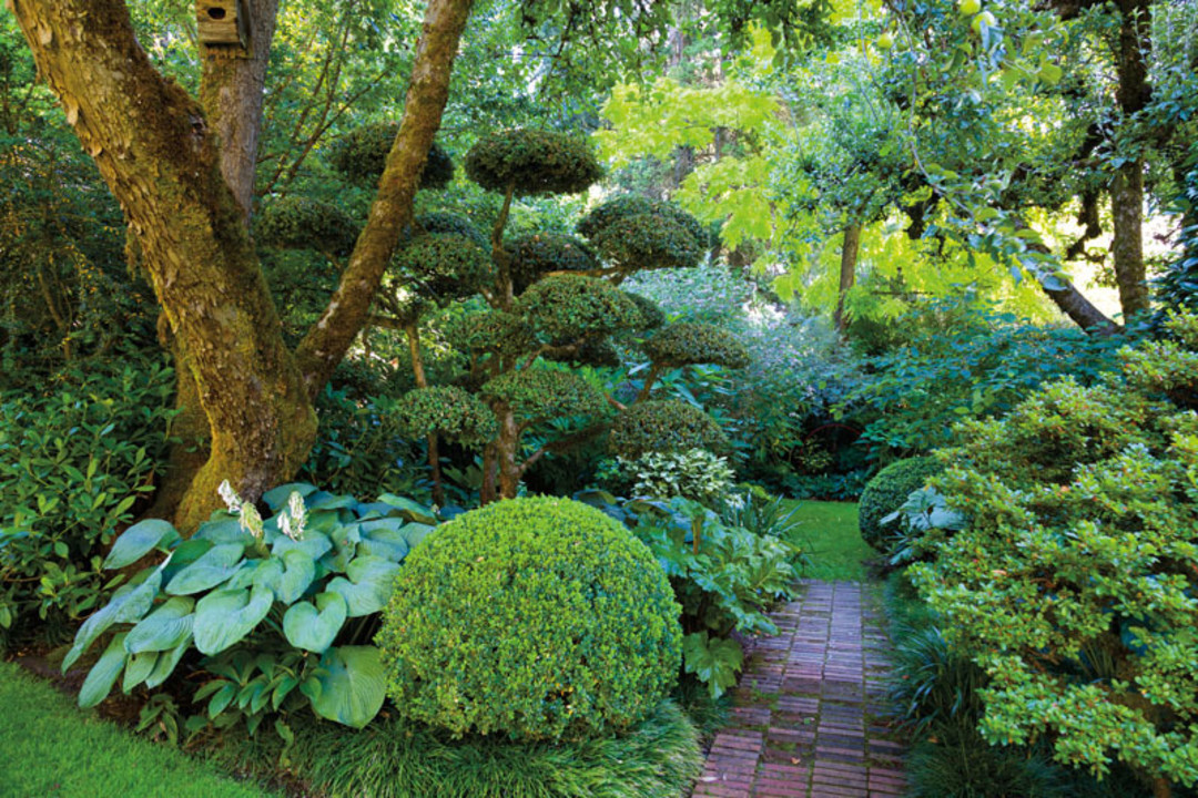A Wild and Playful Portland Garden | Portland Monthly