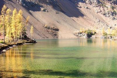 1013 scatterlake trail roc1vf