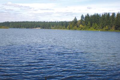 Lacamas lake u8p1jz