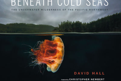 Beneath cold seas  david hall  cover vwxiji