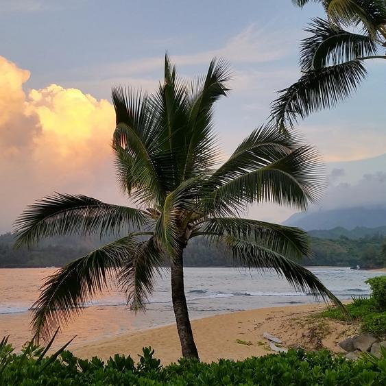 Kauai portland monthly04 zv64pb