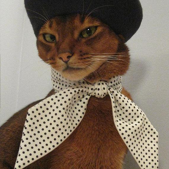 Cat2 oqrsdr
