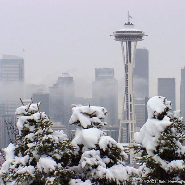 Seattle snow1 cb7lti