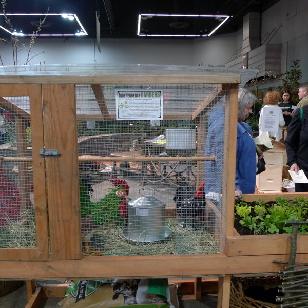 Ygp 2011 chicken coop dm5qex