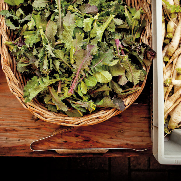 Farmers market salad lwlsga