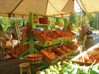 Draper Girls Country Farms
