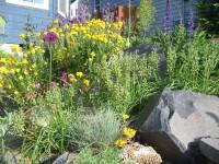 Matthew Shepherd's garden