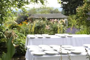 Growing Garden's Chef in my Garden series