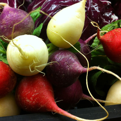 Easter egg radishes yzodl3