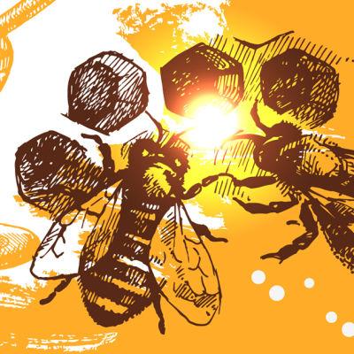 Shutterstock 166466474 nxbez3
