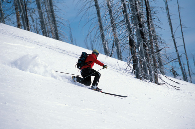 warrior ski
