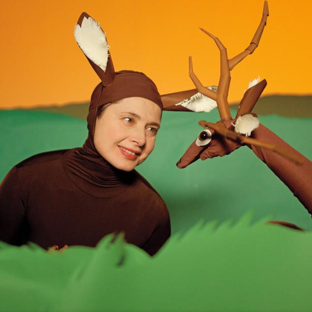 4 036 isabella rossellini deer amehnd