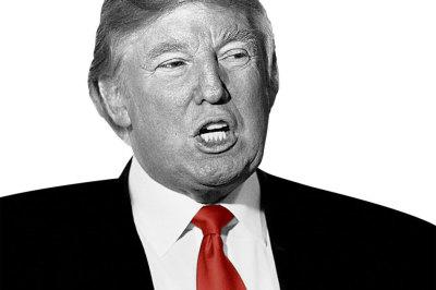 Trump gray c2oqti