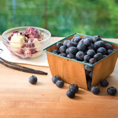 08 julyaug hand 131 blue berries ufovty