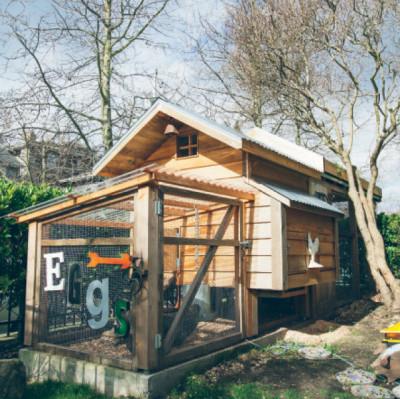 0413 habitat the coop hzzyr7