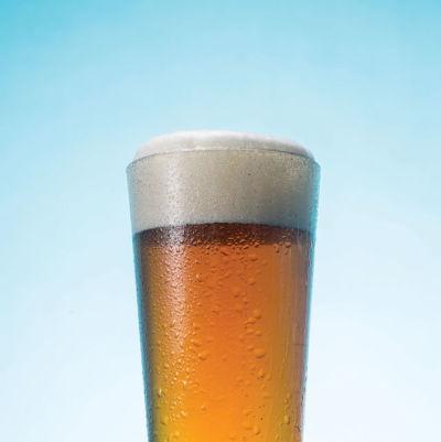 0814 craft beer glossary cover doya8i