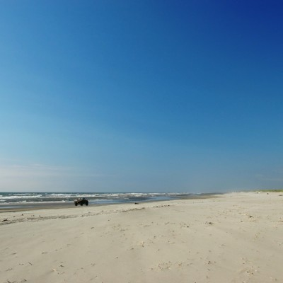 Long beach peninsula shore eugene kalenkovich mjzedh