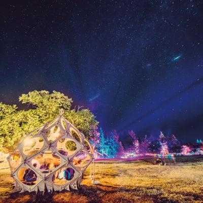 0615 what the festival stars jomhxw