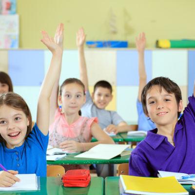 Elementary 20school 20students 20raising 20hands 20in 20classroom. iv9prr