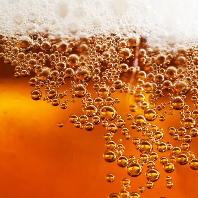 3 14 beer flood seattle e9enn9