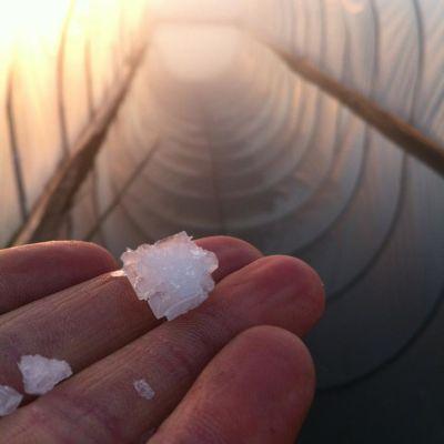 San juan island sea salt of62jz