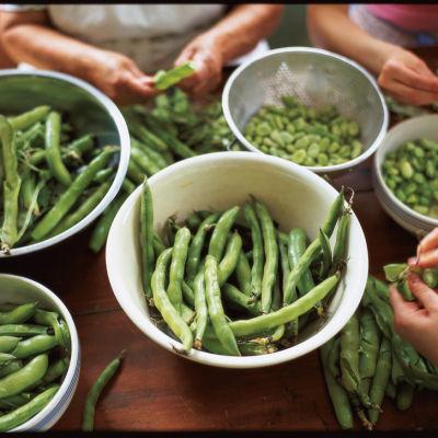 0804 pg173 savor beans fnkwio