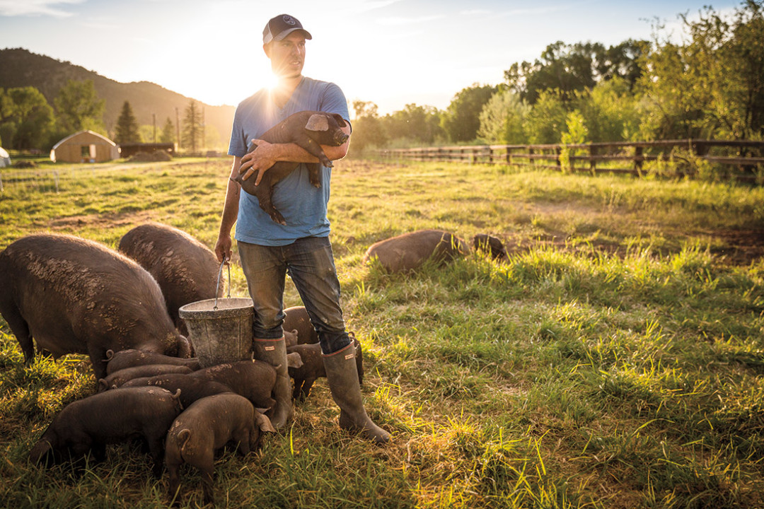 0714 valley farmers pig farmer gnmvye