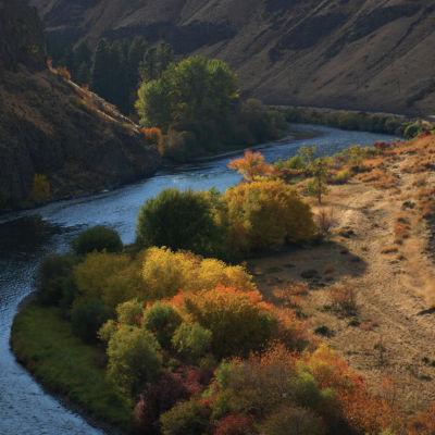 1008 139 week river ksgosx
