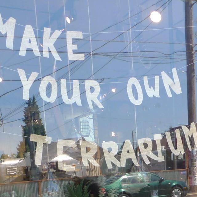 Make your own terrarium  oegyif