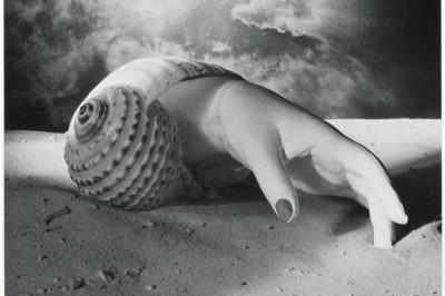 0912 maar hand shell hjfpw1