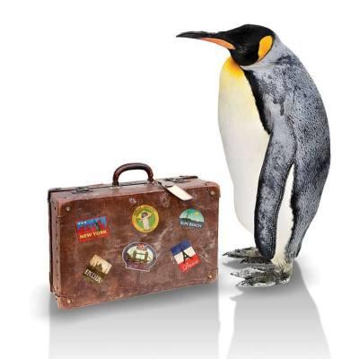 Penguin lyuos3