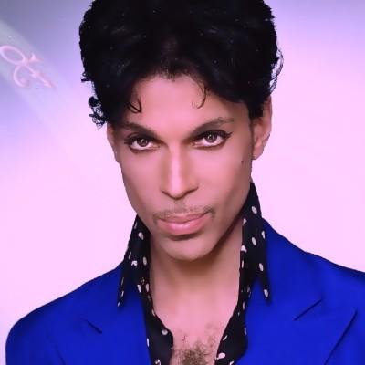 3 13 prince z534r2