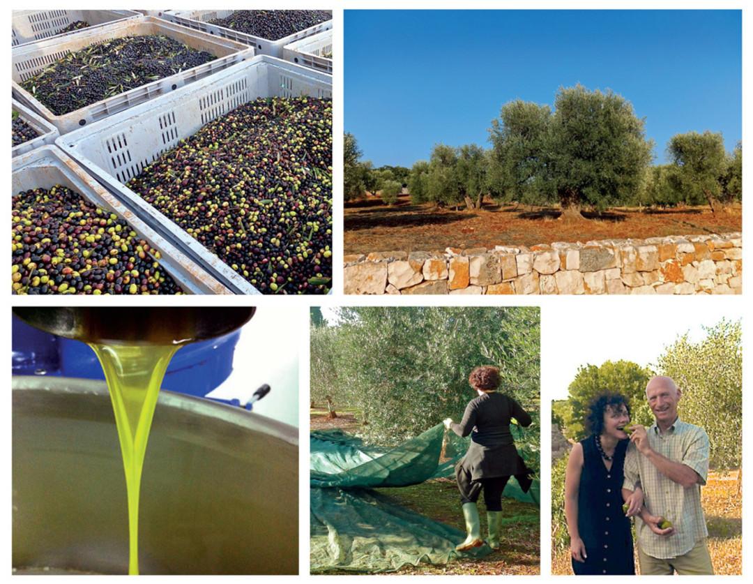Oregon 39 S Olive Oil Barons Portland Monthly